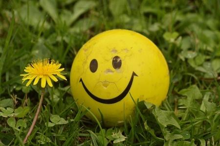Happiness Through Mindfulness